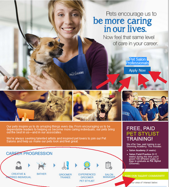 Observe the career progression in the PetSmart department of your choice and click on the Apply Now button to begin your PetSmart Application