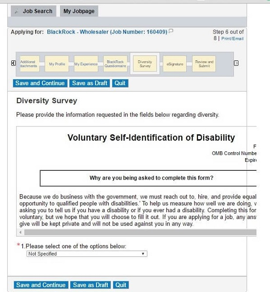 Screenshot of the Diversity section of the BackRock application form