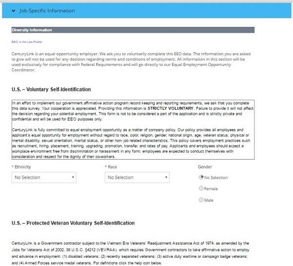 Screenshot of the diversity sections of the CenturyLink application form