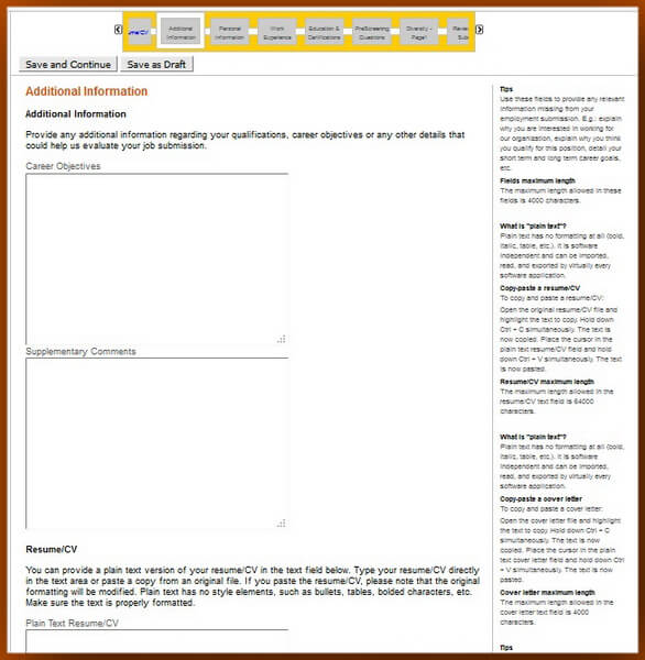 Screenshot of the Additional Information section of the Caterpillar application form