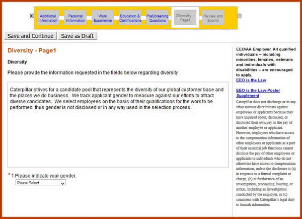 Screenshot of the Diversity Part 1 section of the Caterpillar application form