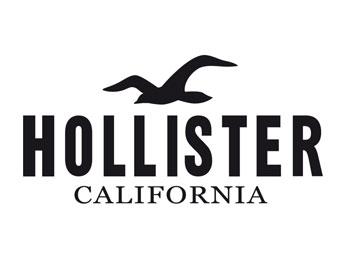 Hollister Job Application & Career Guide