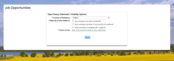 Screenshot of the Halliburton application process
