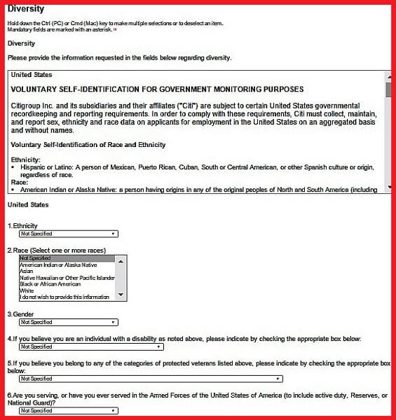 Citigroup Careers Guide  Citigroup Application  Job Application