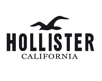 Hollister Job Application & Career Guide